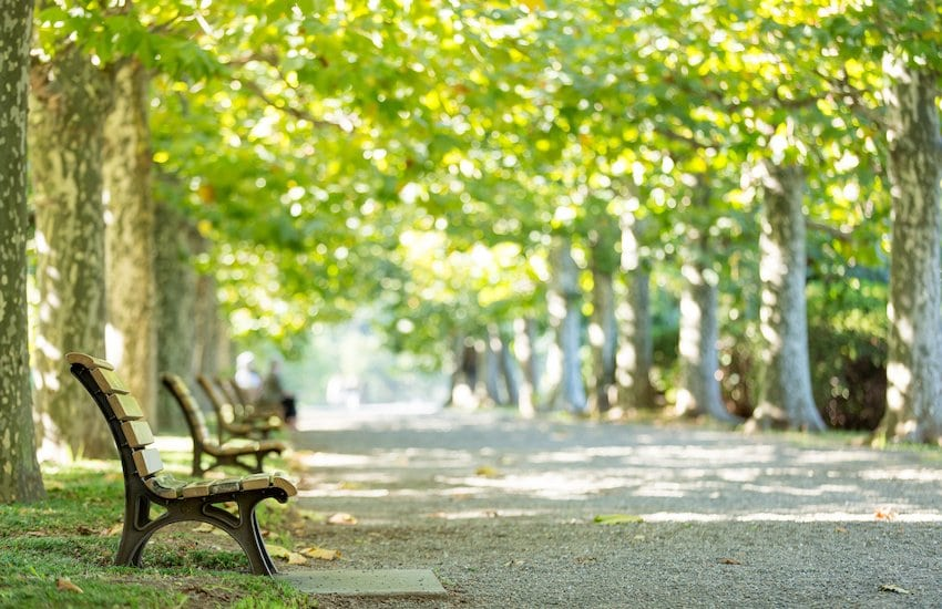 Benches in a park.